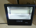 FL250W: 250W Flood Light, COOL WHITE (6000K) BLACK Aluminum Shell