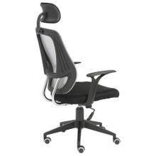 Euro Oakley Office Chair