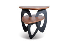 Modrest Sprig Modern Walnut End Table