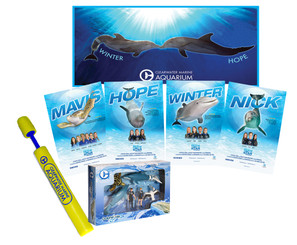 Dolphin Tale 2 Movie Set Combo Pack