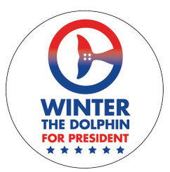 Winter for President Car Magnet