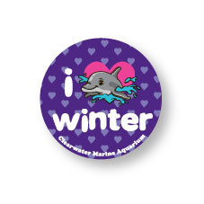 Crazy about Winter the dolphin? Accessorize with this button to show your support!