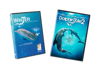 Dolphin Tale 2 DVD and Winter's Real Life Story Documentary