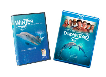 Save time and money with this exclusive DVD trio combo pack that includes the Dolphin Tale 2 Blu-Ray, the Dolphin Tale 2 DVD, and a bonus documentary of Winter's real-life story captured in standard DVD for your viewing pleasure.