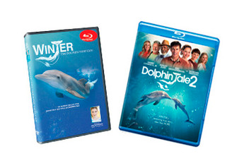 Enjoy the perfect DVD/Blu-Ray trio