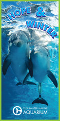 Want a sure way to make a splash at the beach? Bring along this soft towel featuring the remarkable friends Winter & Hope the dolphins --- support and inspire!