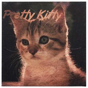 Canvas Cat Print - Pretty Kitty - Wall Art 35215
