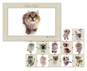 Feline Friend Reversible Placemat 44402
