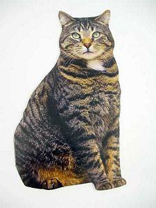 Cat Birthday Card Brown Tabby  - CDC01-0014E