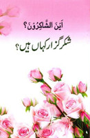 Shukr Guzar Kahan Hain?(Ayn-al-Shakiroon) Book