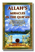 Allah's Miracles In The Quran