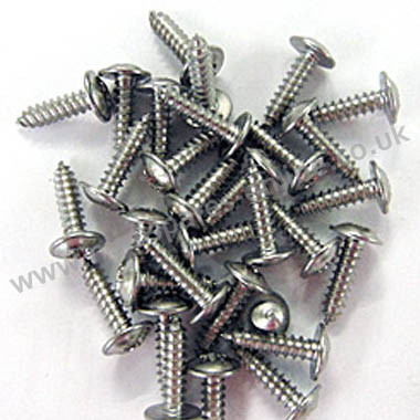 Stainless self tapping screws