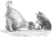 Playful Puppy and Kitten Pencil Sketch by Craig Cassell, a quadraplegic artist who draws with his mouth.