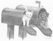 Puppy and Kitten in Mailbox Pencil Sketch by Craig Cassell, a quadraplegic artist who draws with his mouth.