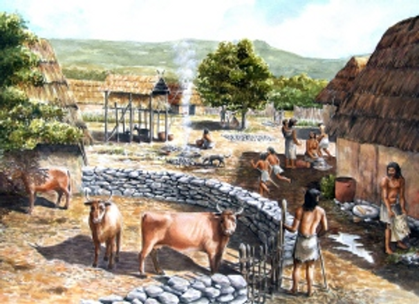 Cheese History - Neolithic Age