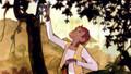 A Monkey's Tale (1999) DVD