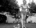 The Legend of Marilyn Monroe (1966) DVD