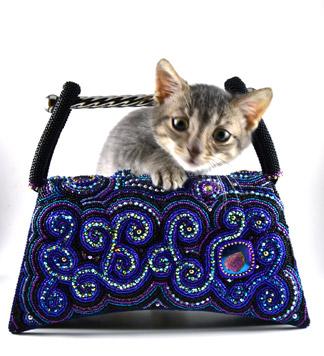 cat-gallery.jpg