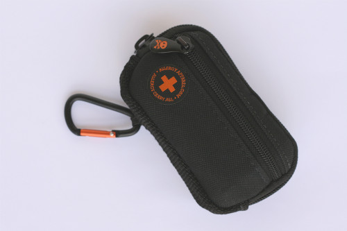 Auvi-Q Carry All