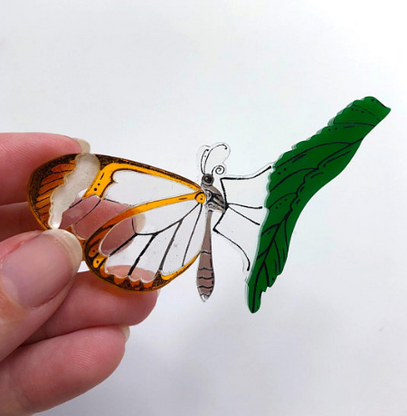 Hungry Designs Glasswing Butterfly Premium Brooch - Cobalt Heights