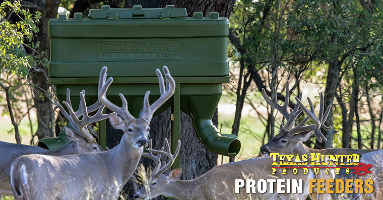 Where to place protein feeders to attract the most deer for Texas hunter fish feeder