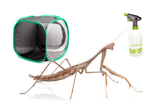 Grass Mantis Kit - save over 10%