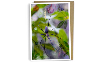 Golden Orb - Greeting Card