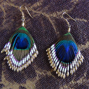Authentic Peacock Feather Earrings