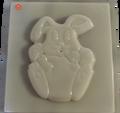 Bunny Eating / Conejo Comiendo