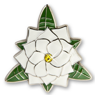 Gardenia Key Finder