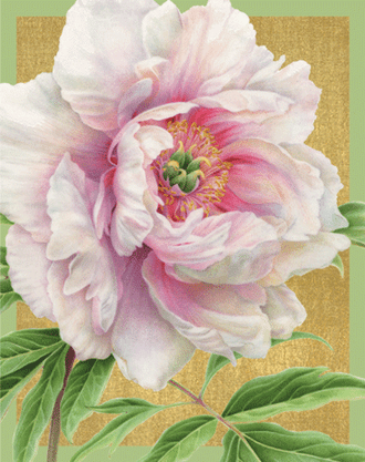 Bridge Tallies Peonies