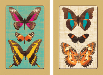 Playing Cards Deyrolle Butterflies - Large Type