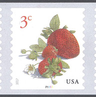 Scott # 5201 Plate # P1111 .03 Strawberries