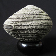 Striped Pyrite Sphere Concretion, China -SOLD
