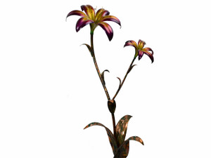 "Copper Lily Flower - Double Bloom -  60"" Tall - Oversized Item - CONTACT US FOR SHIPPING & ORDER INFO."