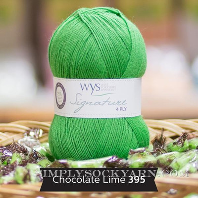 WYS Solid 395 Chocolate Lime -
