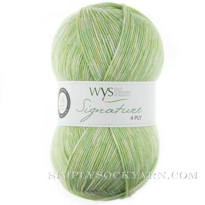 WYS Florist 803 Gypsophila -