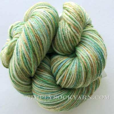 CY 220 SW Effects 18 Spring -