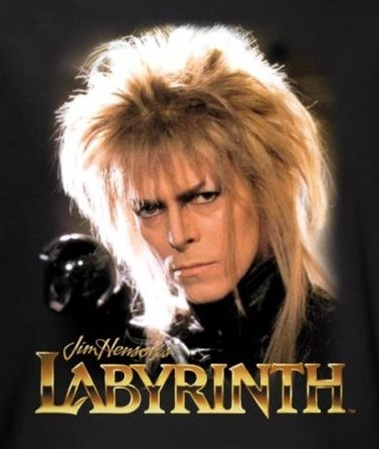 Banner image for the Labyrinth t shirt category