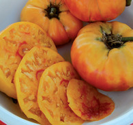 Gold Medal Tomato  | Amish Country Bulk Food in Missouri