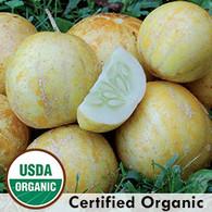 True Lemon Cucumber Organic Seeds   Amish Country Bulk Food in Missouri
