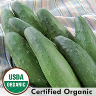 Longfellow Cucumber Organic Seeds - Seed Savers Exchange | Amish Country Store in Branson, Missouri
