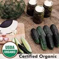 Parade Cucumber Organic