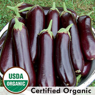 Diamond Eggplant Organic