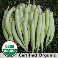 Silver Queen Okra  Organic