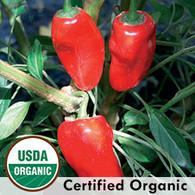 Hinkelhatz Pepper Organic