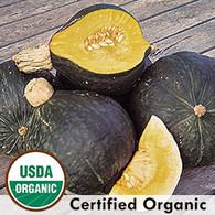 Anna Swartz Hubbard Squash Organic