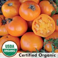 Nebraska Wedding Tomato Organic