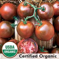 Nyagous Tomato Organic