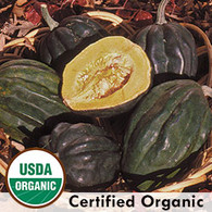 Table Queen Squash Organic